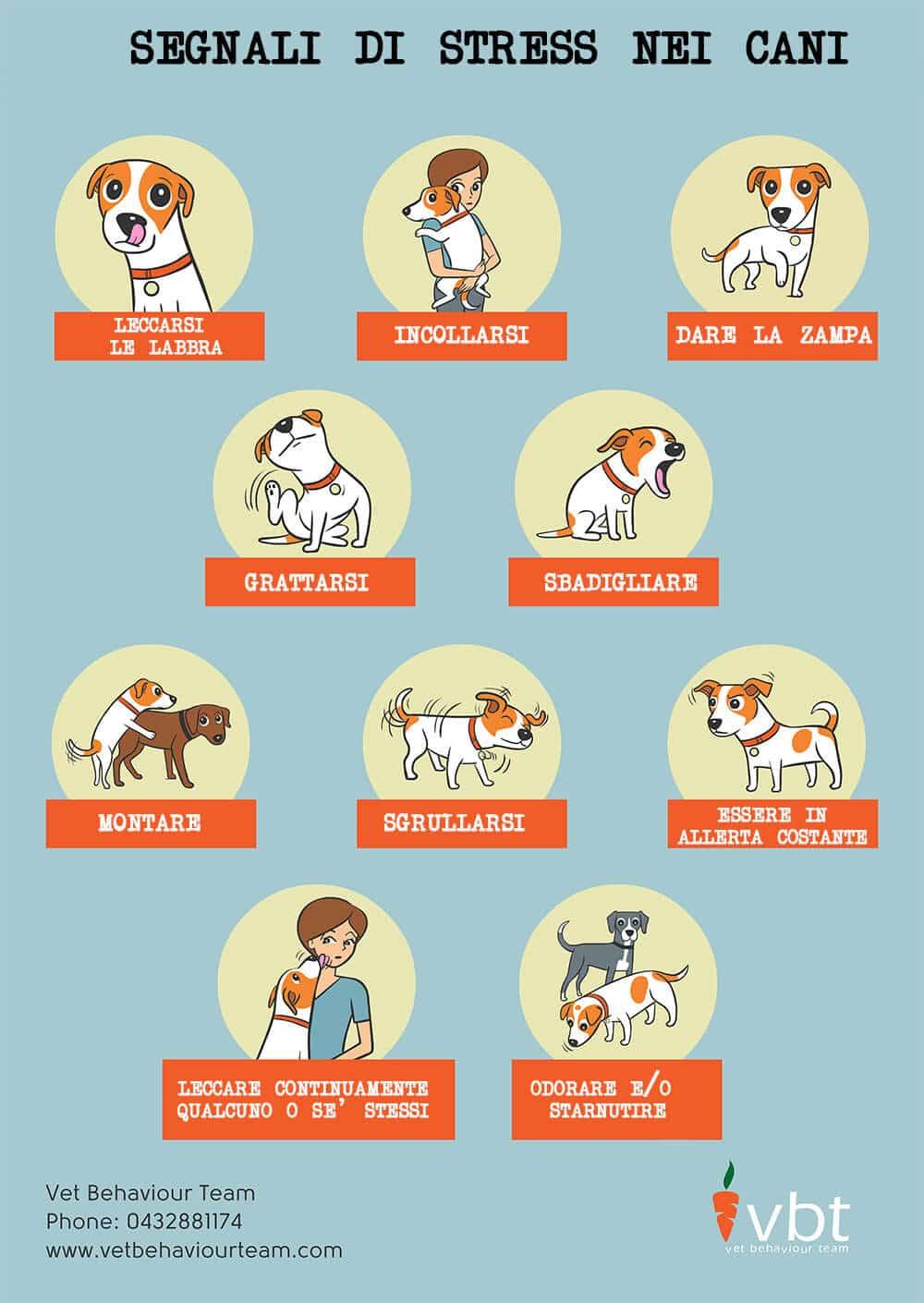 Infografica sulla comunicazione e sul linguaggio dei cani- come parlano e come comunicano i cani 2