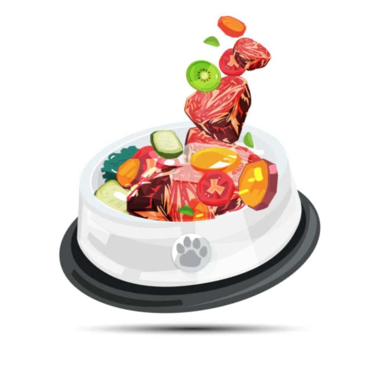 Alimentazione e dieta BARF per cani - Nutrizione del cane a base di carne cruda, ossa carnose, pesce crudo, organi, viscere, frutta e verdura 10