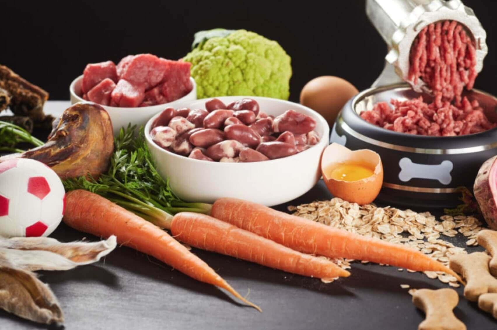 Alimentazione e dieta BARF per cani - Nutrizione del cane a base di carne cruda, ossa carnose, pesce crudo, organi, viscere, frutta e verdura 4