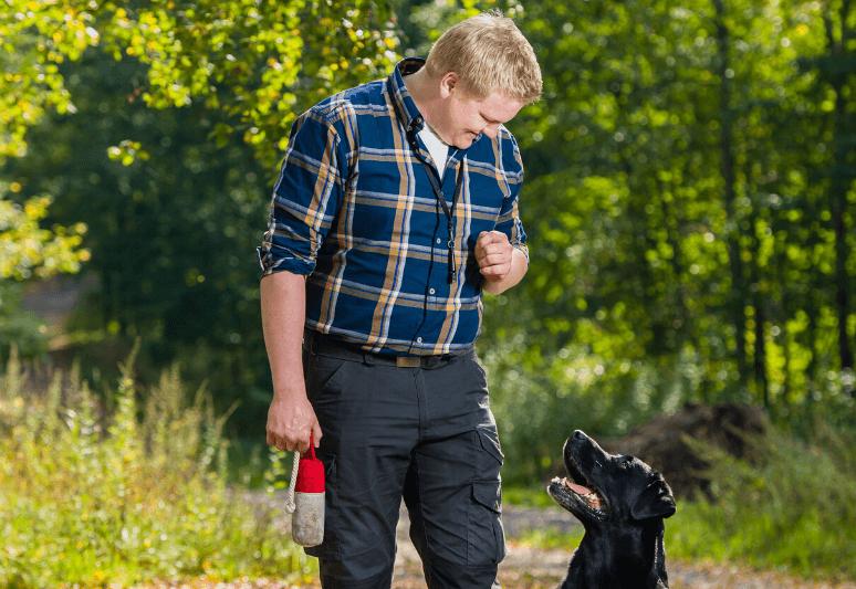La guida sul cane labrador retriever (6)